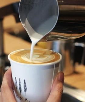 Dream Job Alert! You Can Now Get Paid $10,000 To Drink Coffee For A Month!