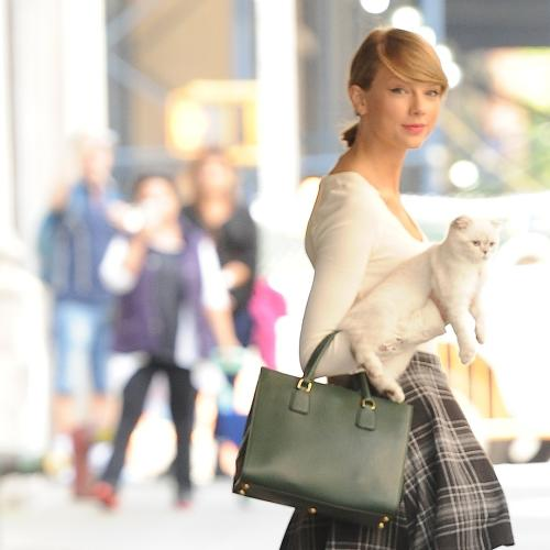 Taylor Swift Cast in 'Cats' the Musical