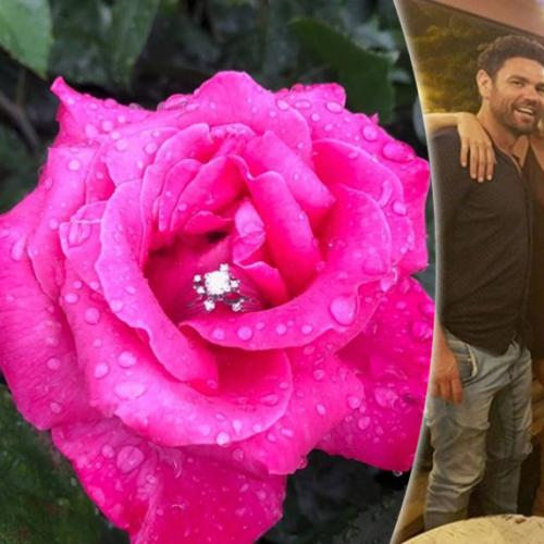 Mafs Fav Sean Hollands Gets Engaged At Melbourne Cup