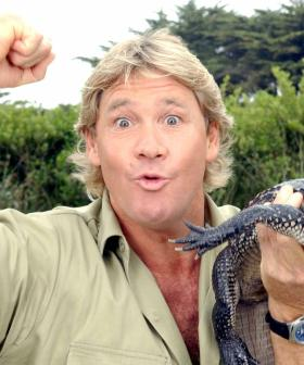 """Steve Irwin Should Be Australia's National Icon"" According To New Aussie Survey"