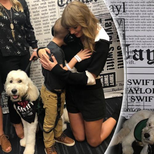 Taylor Swift Donates $10,000 Towards Boy's Service Dog