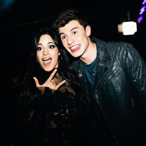 Shawn Mendes & Camila Cabello Hold Hands Amid Dating Rumours — See The Pics
