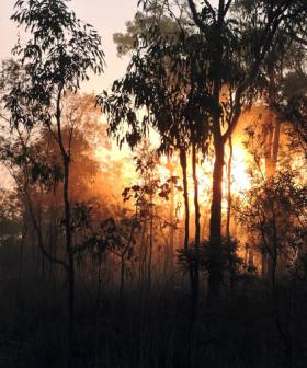 Weather Finally Eases in QLD Bushfire Crisis