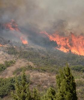QLD Bushfires: What You Need to Know
