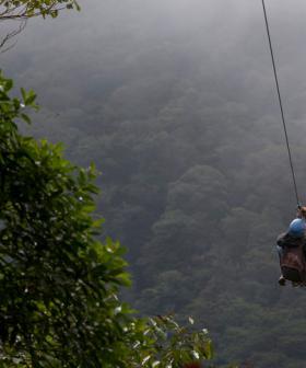 Man Dies in Queensland Zipline Fall
