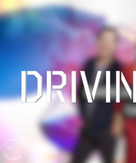 Bianca, Mike & Bob Take a 'Driving Test'