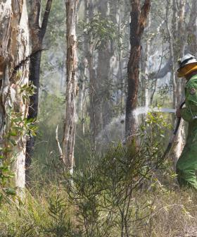 High Danger as QLD Bushfires Continue