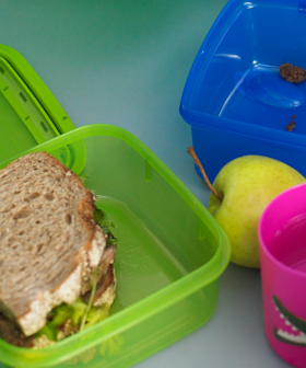 The Lunchbox Shaming Has Already Begun & We're Only in Week 1