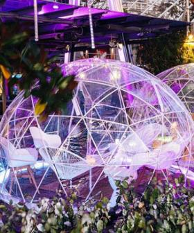 You Can Wine And Dine In A Private Igloo In Sydney's Darling Harbour This Winter