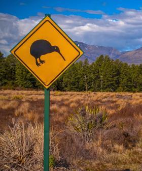 Queensland Opens Its Border To New Zealand