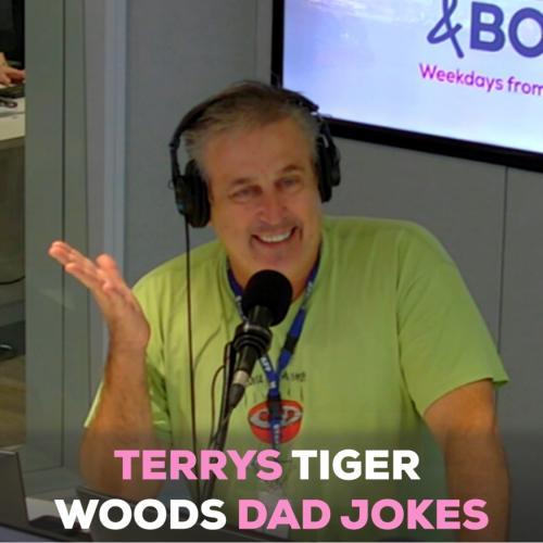 Terrys Terrible Tiger Woods Dad Jokes