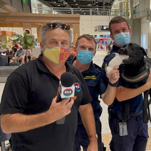 Animals Got Talent: Terry Meets Alexis The Expert Drug Sniffing Dog!
