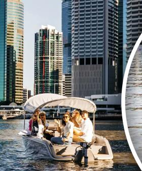 Take The Sea-Nic Route - Picnic Boats Have Arrived In Brisbane!