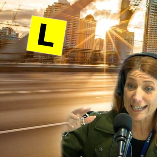 Robin's Son Lived His 'Worst Nightmare' While Learning To Drive With Her!